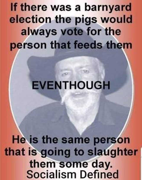 barnyard election pigs vote person feeds same person slaughter socialism defined