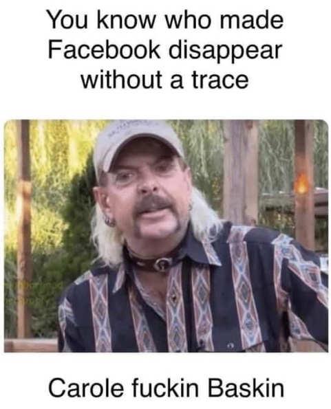 tiger kind who made facebook disappear carole baskin
