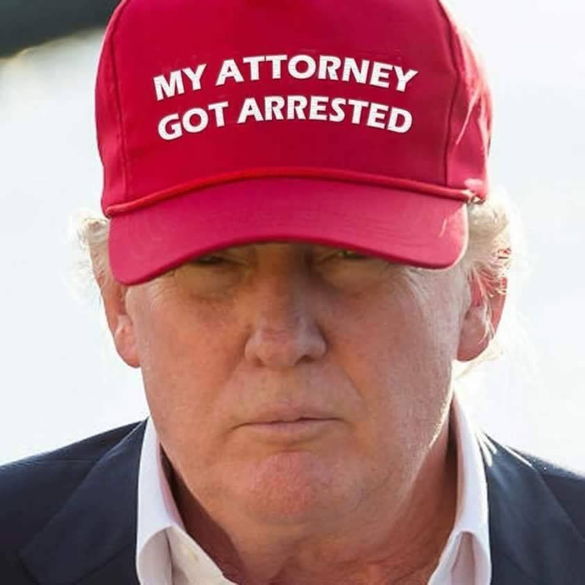 Image result for Trump in MAGA hat images