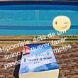 Dicionário de suinês