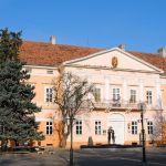 Prvi poraz od svih zaštićene direktorke Narodnog muzeja Kikinda; Nekultura, ili nešto (mnogo) više?