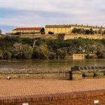 Egzit ipak na Petrovaradinskoj tvrđavi u avgustu?