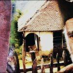 Bluz izumrle Šumadijske rase, koja je nestala u bunama i ratovima, u epidemijama i našim mirovima