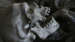 Zub neandertalca pronađen kod Niša otkriva zašto su ljudi postali pametniji