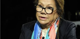 Graciela Camaño apoyó al kirchnerismo