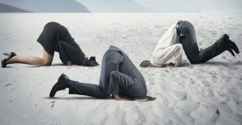 Democrats and the Democratic Party head in the sand