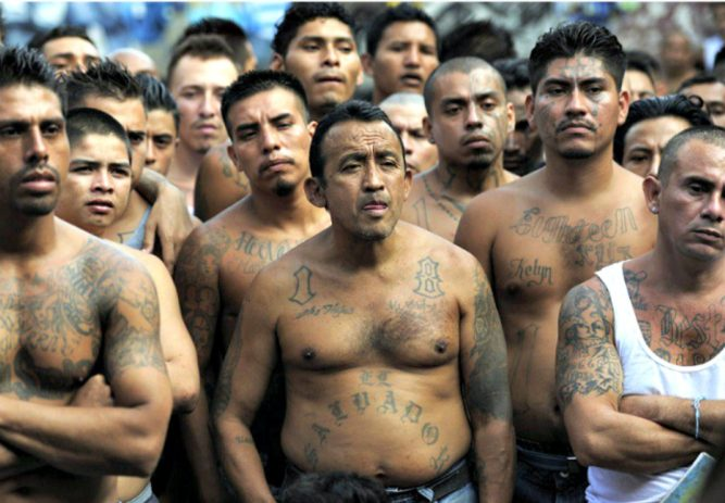 Most Gang 34 DACA Amnesty Signers Trump Districts