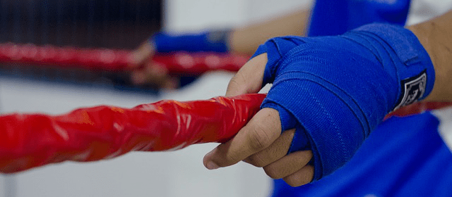 boxen-kämpfer-seile-hände by  IgorSuassuna via pixabay (CC0)