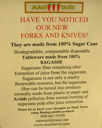 bagasse forks and knifes