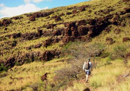 Lahaina Pail trail
