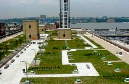 nyc post office green roof