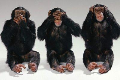 See-no-evil-hear-no-evil-speak-no-evil-monkeys