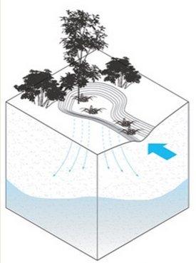 capture-rainfall