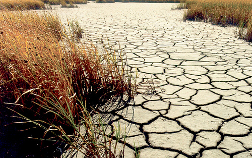 drought apocalypse photo