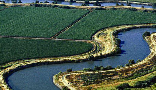 Sacramento Delta farming