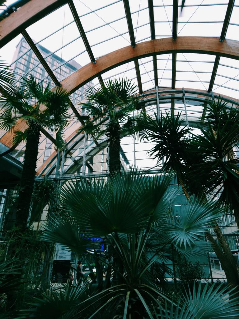 Sheffield_Winter_Garden