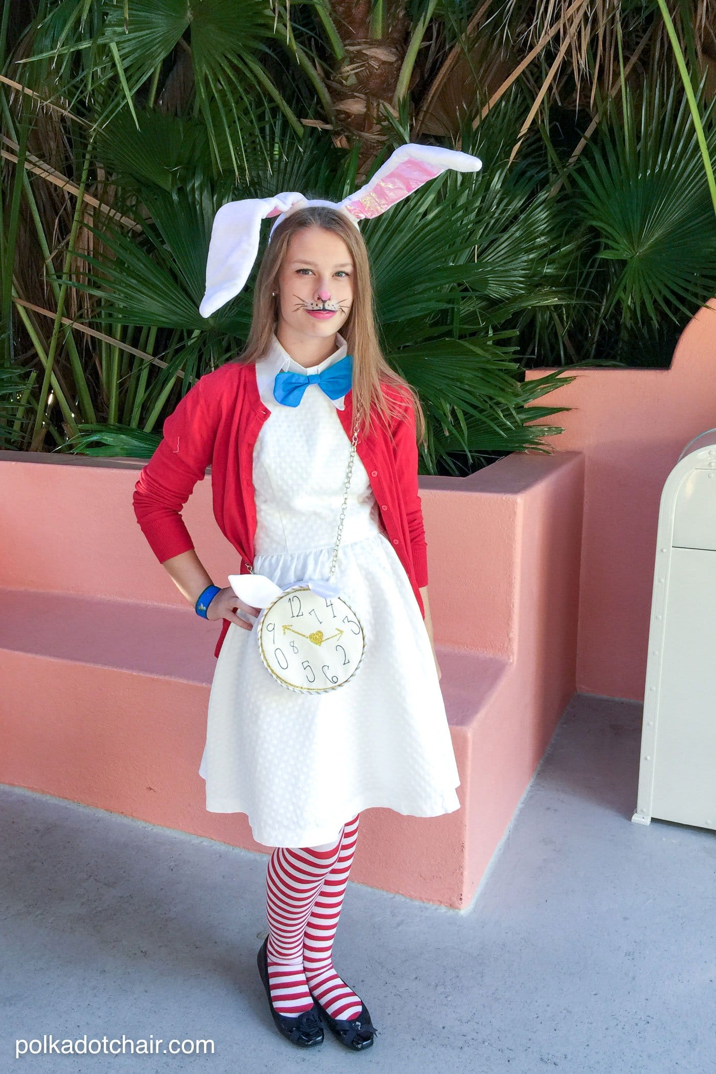 No Sew Alice In Wonderland Costume Ideas  The Polka Dot Chair