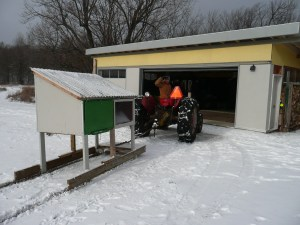 overwintering chickens in the garage