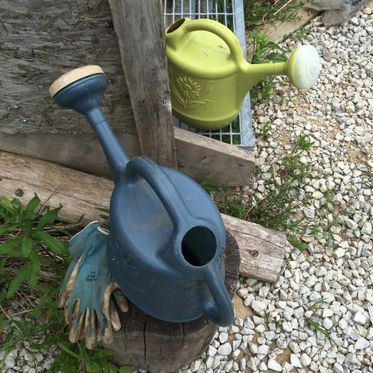 plastic watering can and gloves
