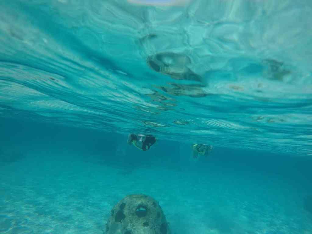 polkadotsandpixiedust.com disney castaway cay snorkeling