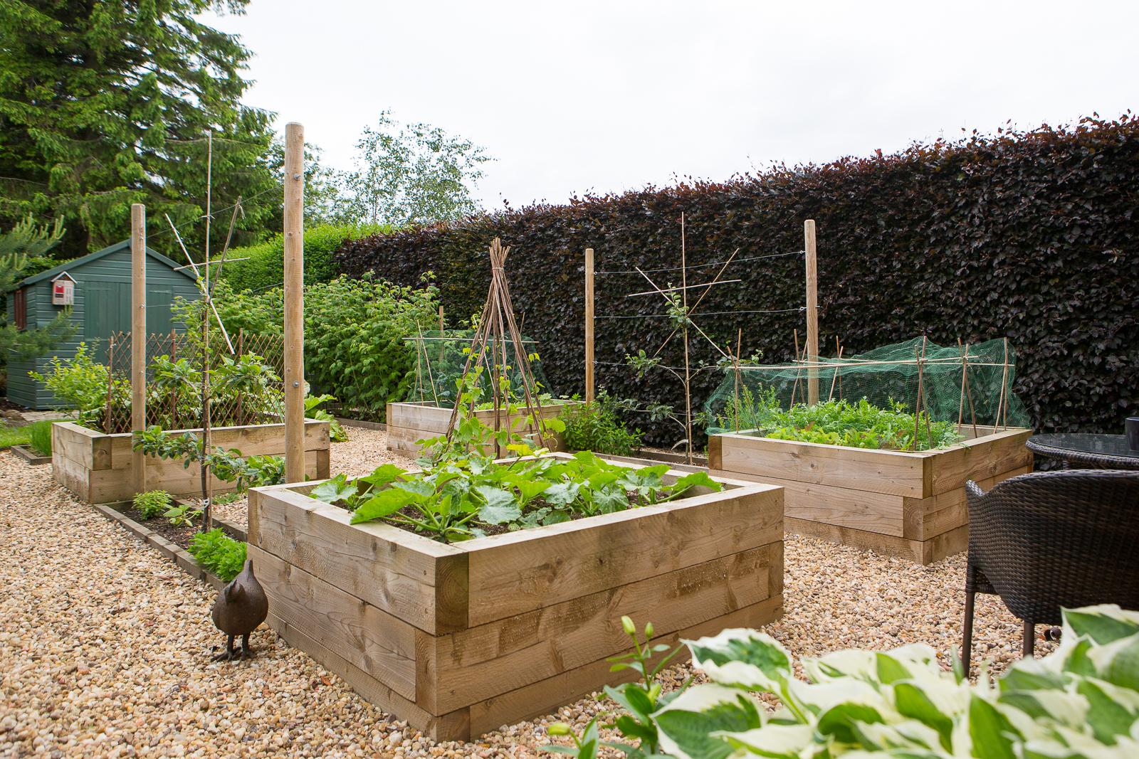 Top Garden Trends for 2017  Polley Garden Design