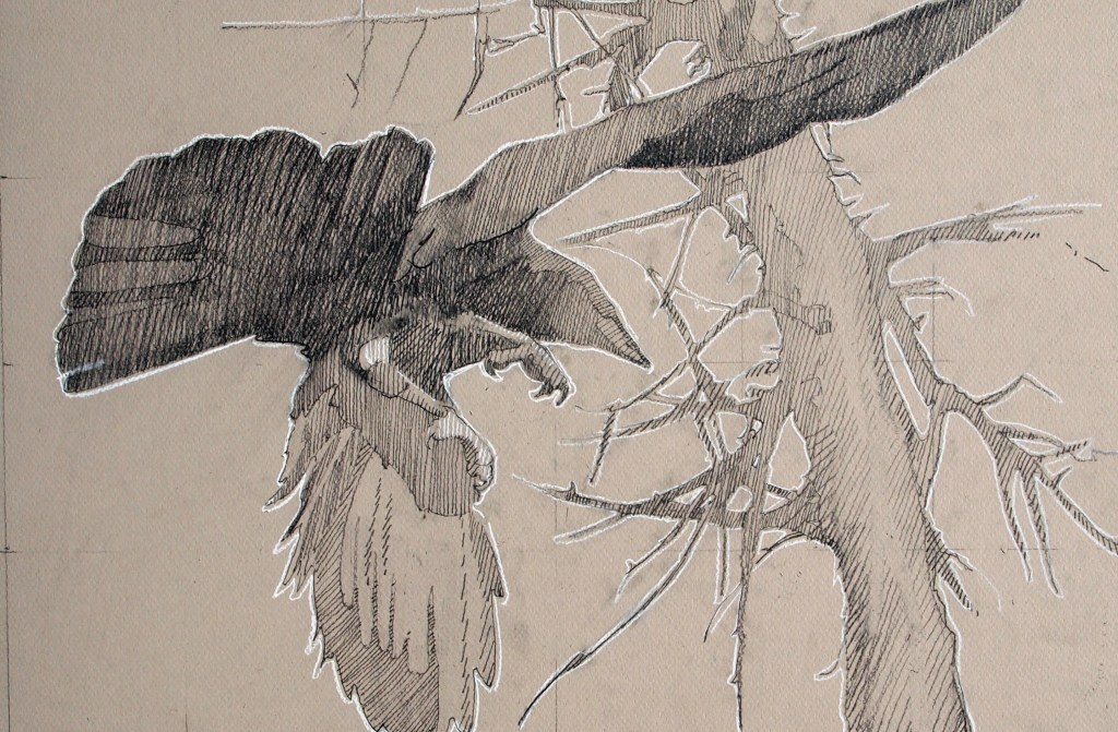 Crow beneath tree, 12 x 18 inches, Graphite and Cone on board