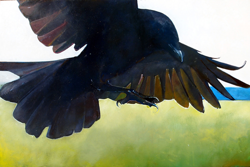 24x36_CROW_IN_SUNLIGHT