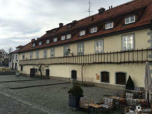 Vine house with oldest vine in the world @Maribor, Slovenia