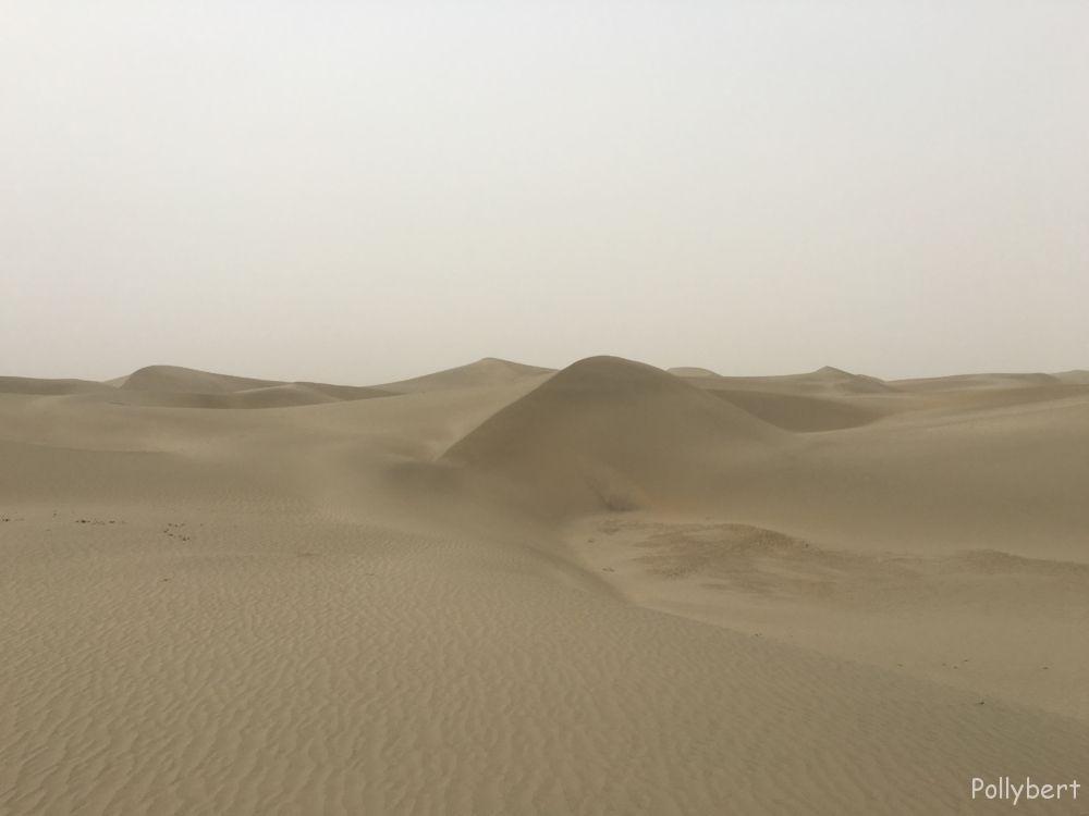 The Taklamakan desert  living to the fullest