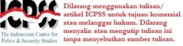 Logo ICPSS - Copyright