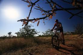 Manvhela Ben Lavin Nature Reserve, Limpopo
