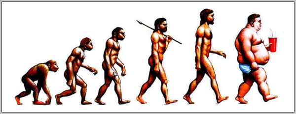 evolution-013