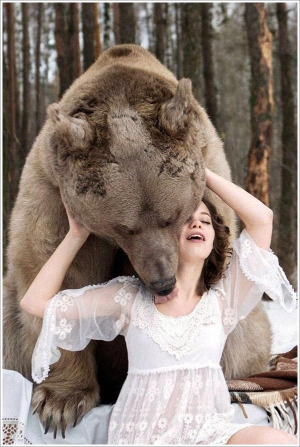 bear-stepan18