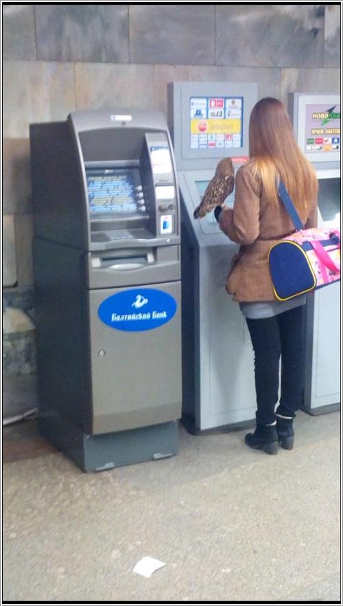 ATM11