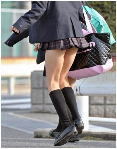 skirt29
