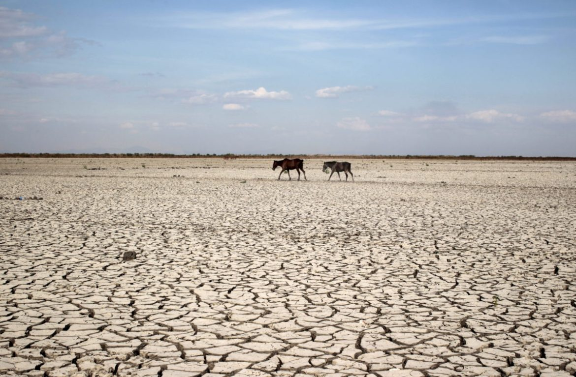 Bad Weather Below the Border:The Climate Politics of Migration
