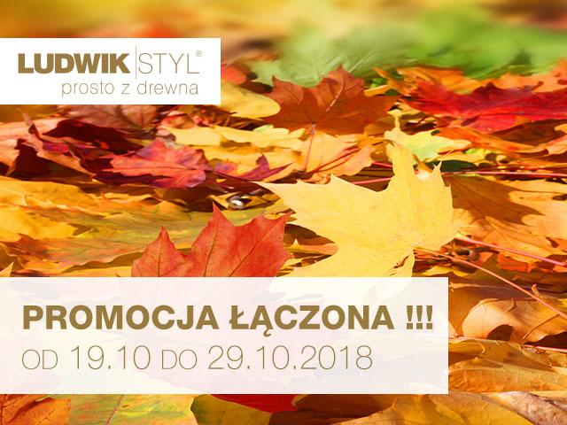 ludwik-styl-19-29-10-2018