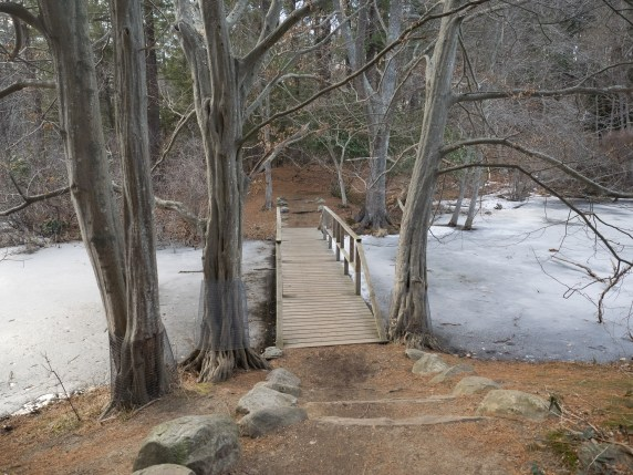 The Ipswich River Wildlife Sanctuary, which is the Massachusetts Audubon Society's largest wildlife sanctuary, is located in Topsfield and Wenham, Massachusetts. Much of its 2,800-acre landscape was created by a glacier 15,000 years ago. - Wikipedia