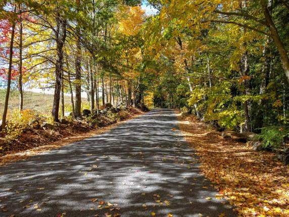 Autumn in the Monadnock Region