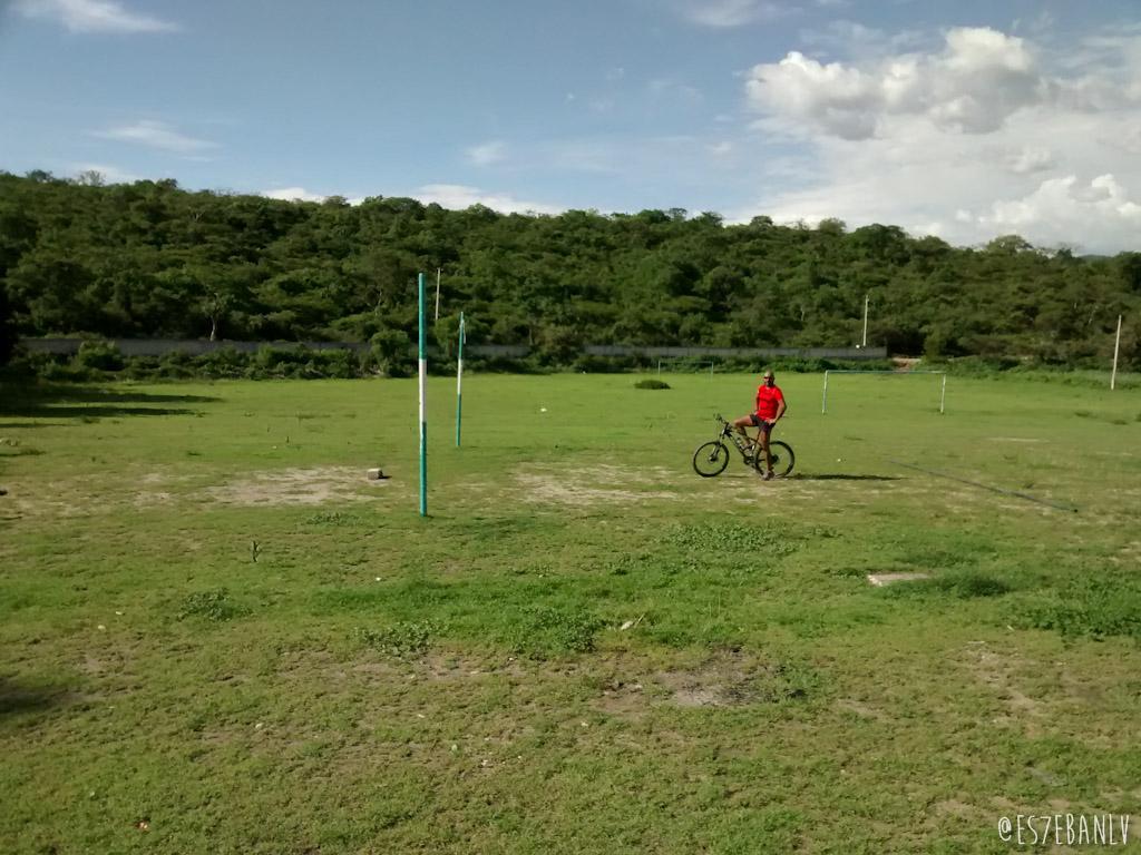Un chango en bicicleta.