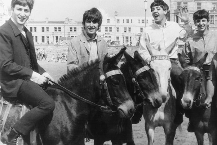 the-beatles-animales