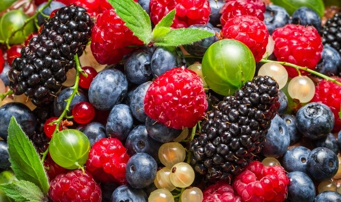 Производство овощей и ягод для супермаркетов в г. Adamów (Люблин)