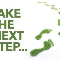 "What is the ""Next Step?"": Options"