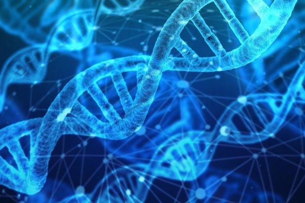 Génétique : séquencer le génome pour mieux comprendre la PR