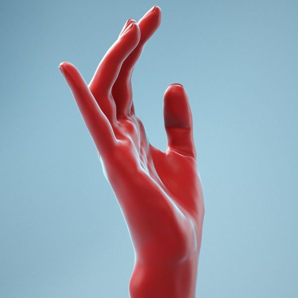 Elegant Relaxed Realistic Hand
