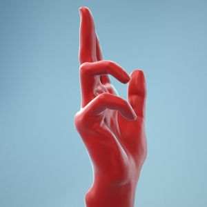 Holistic Gesture Realistic Hand