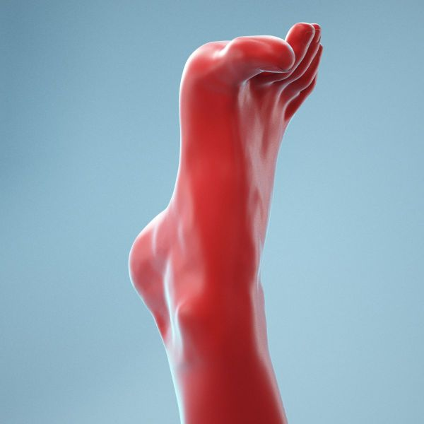 Open Toes Realistic Foot