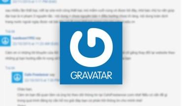 Gravatar khiến website cực kỳ chậm khi lượng comment trong bài nhiều