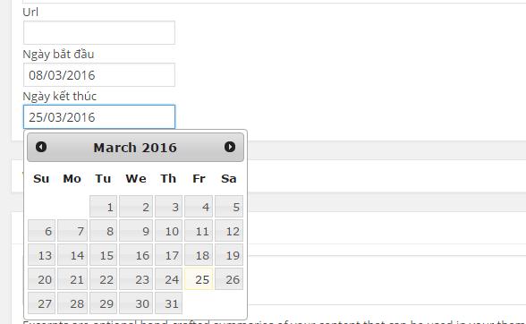 Sử dụng datepicker trong metabox WordPress