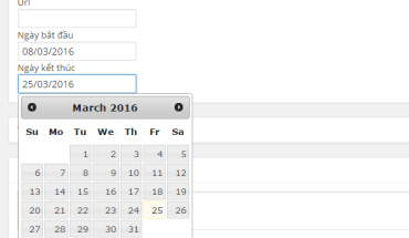 Sử dụng datepicker trong metabox WordPress